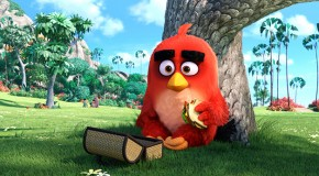 """Bande-annonce : """"Angry Birds"""" de C. Kaytis & F. Reilly"""