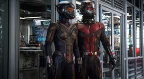 «Ant-Man et la Guêpe» de Peyton Reed