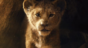 """""""Le Roi Lion"""" de J. Favreau"""